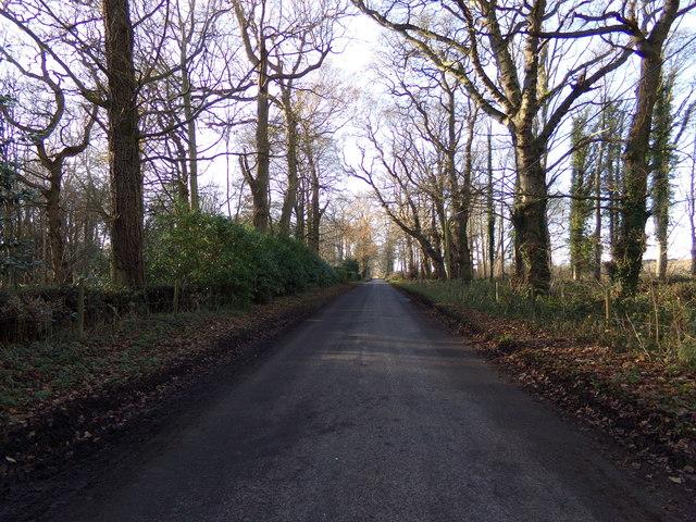 Blocka Road